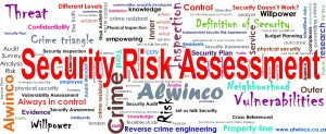 The Multiple facets within the Security Risk Assessment